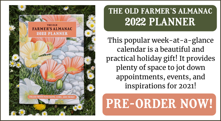 2022_planner_spring_ad.png