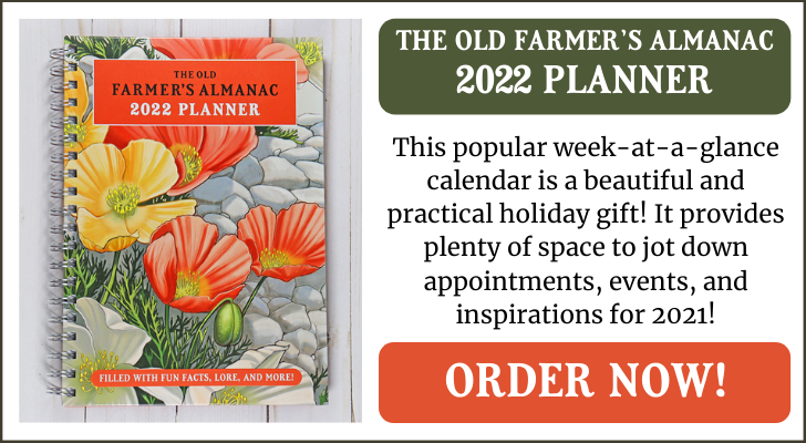 2022_planner_spring_ad_1.png