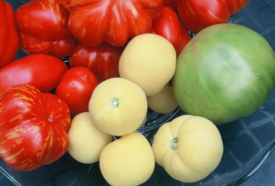 tomatoes: fruit or vegetable