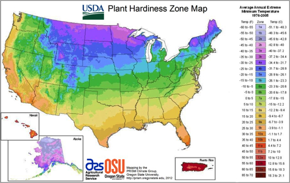 Planting Zones For The US And Canada The Old Farmers Almanac - Usa map zone wise