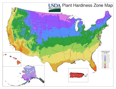 plant hardiness zone map usda and agriculture canada  the old, Natural flower