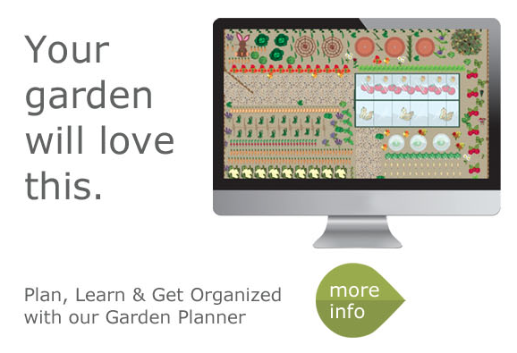 Garden Layout Ideas | The Old Farmer'S Almanac