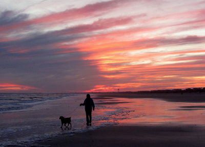 Pink sunset on beach with dog