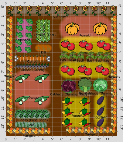 Small Garden Plan: Community Garden