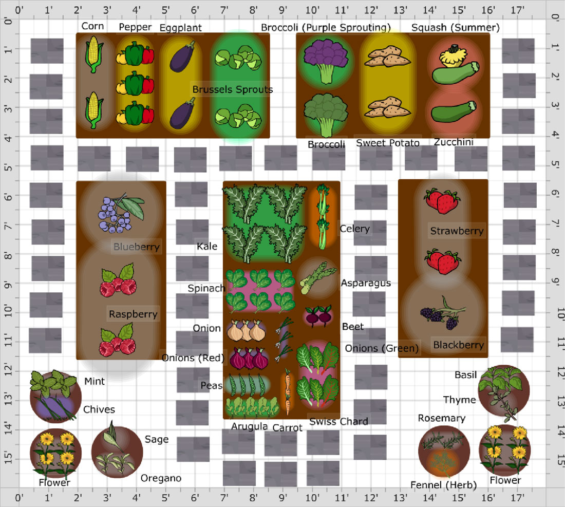 Vegetable garden planner for pc and mac desktop computer for Best vegetable garden layout