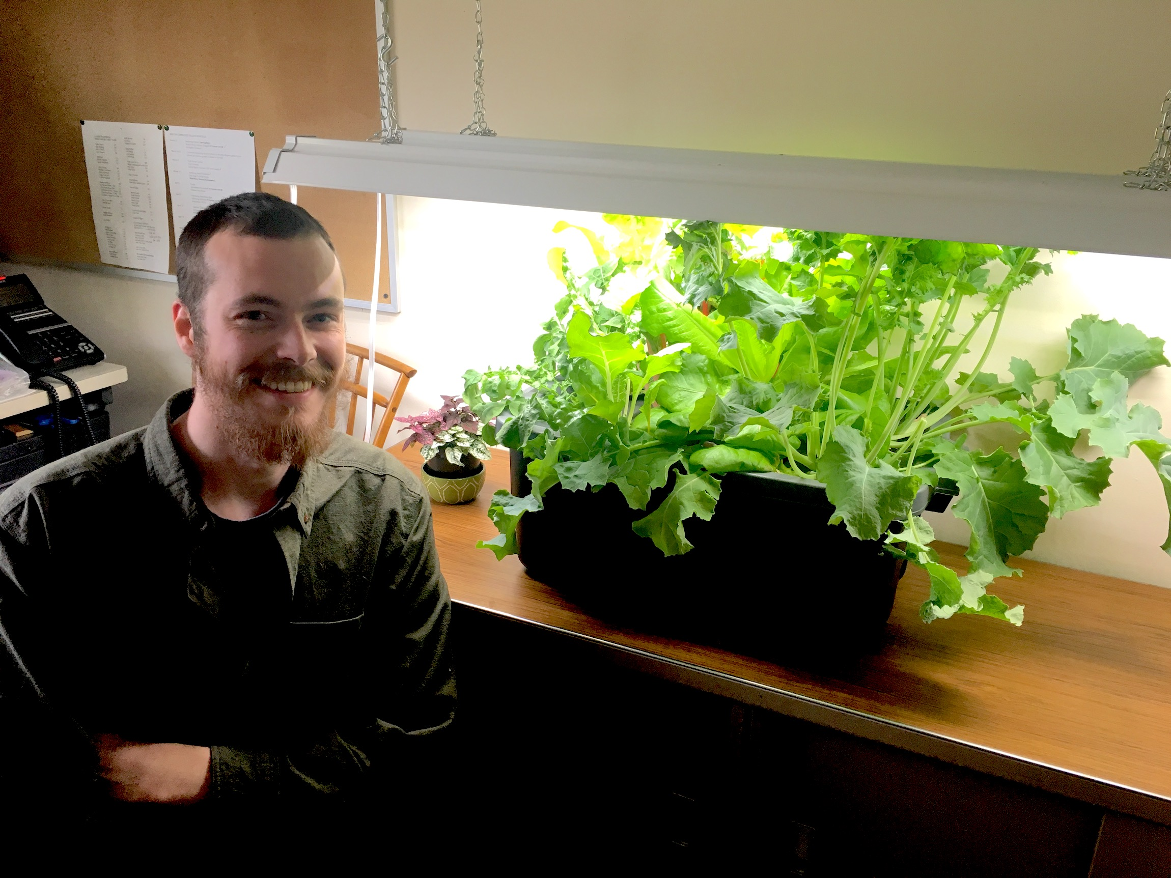 Choosing The Right Grow Lights For Vegetables The Old Farmer S