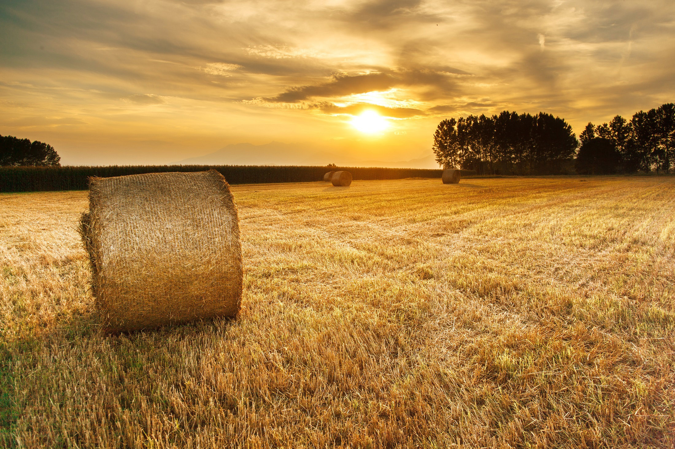 Best Days For The Month Of October 2016 Old Farmer S Almanac