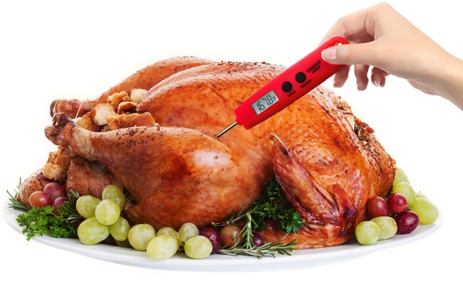 Image result for cooked turkey temperature