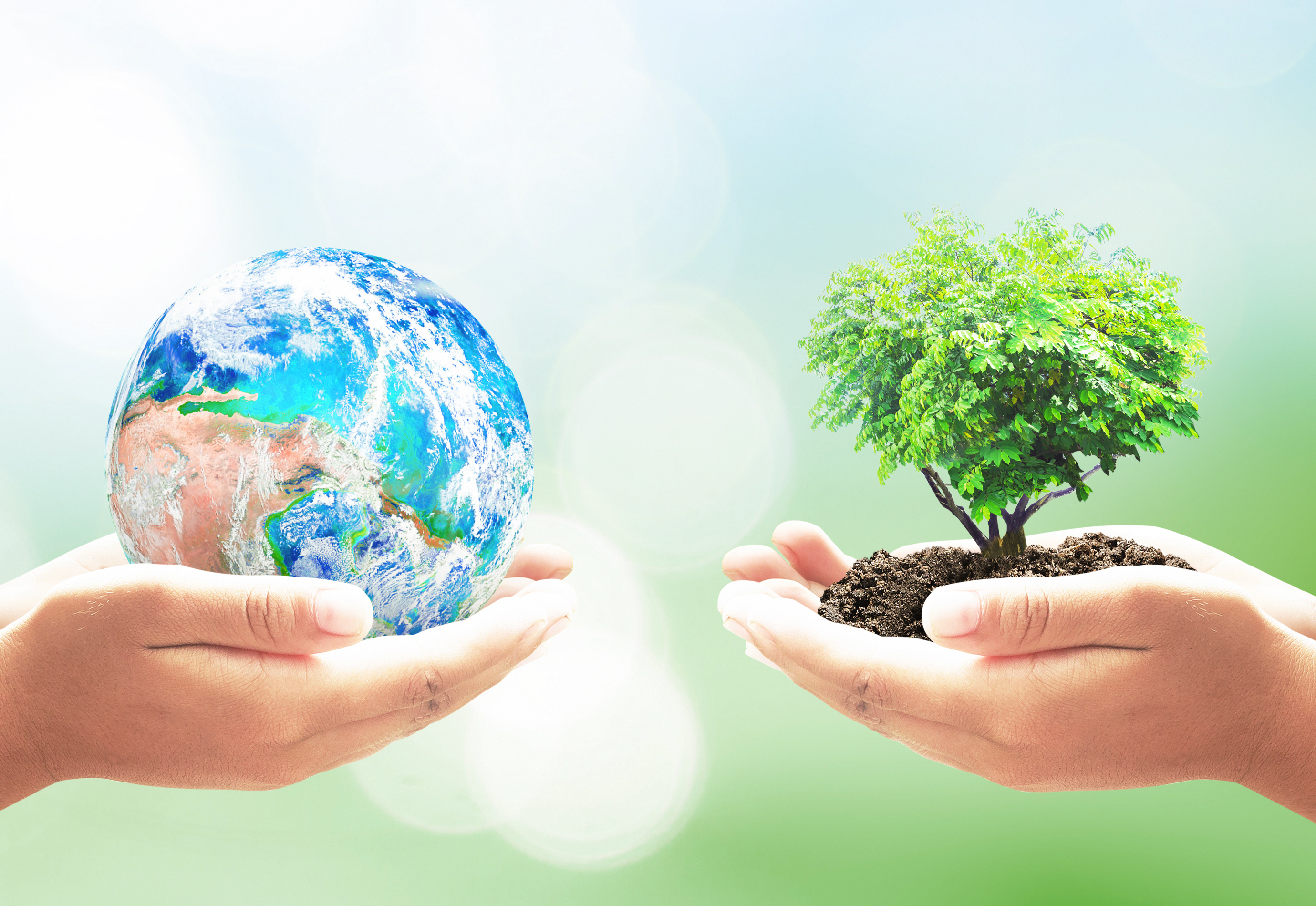 Earth Day 2021 When Is Earth Day Celebrating Earth Day At Home The Old Farmer S Almanac