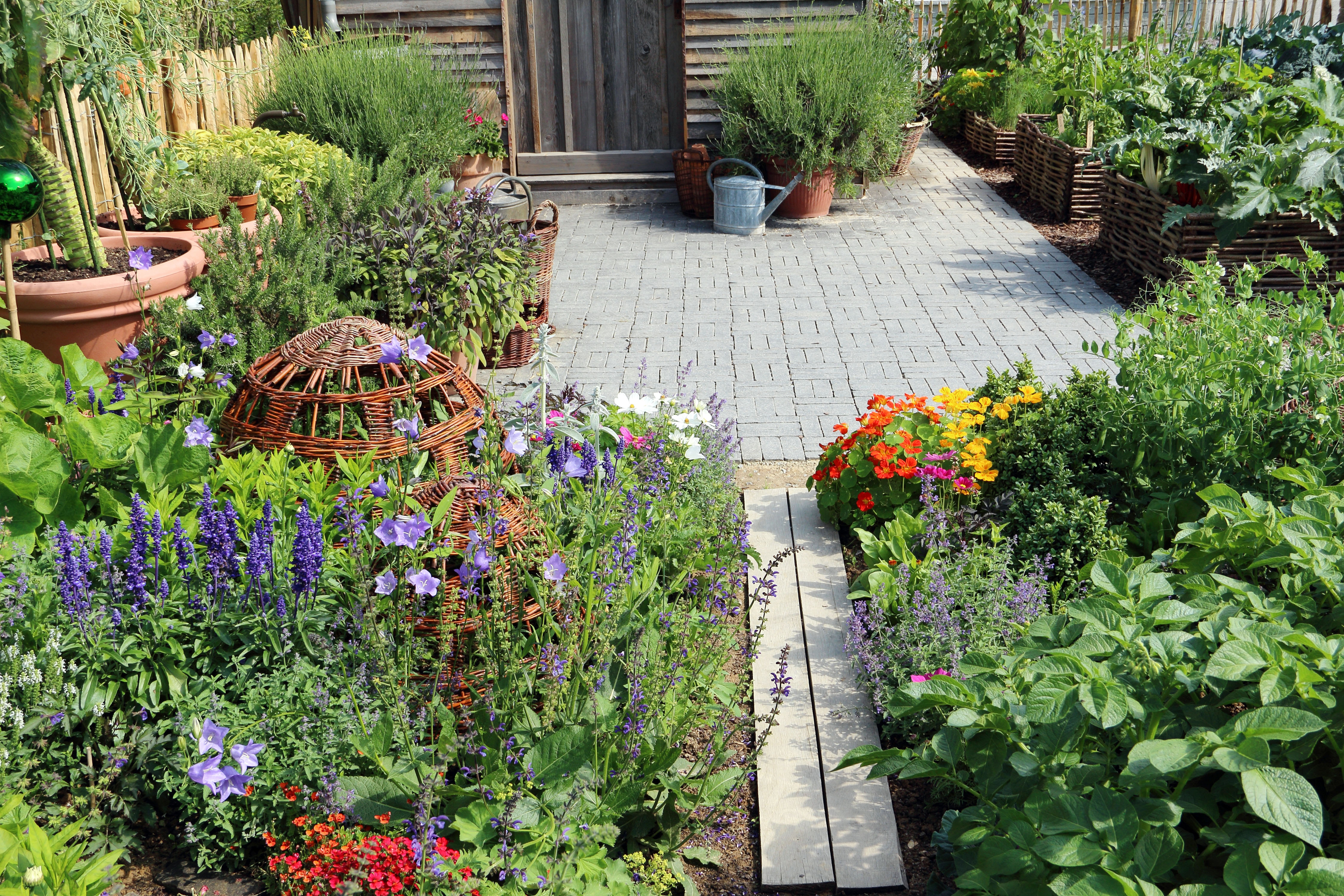 Edible Landscaping Plants Pictures | The Old Farmer's Almanac