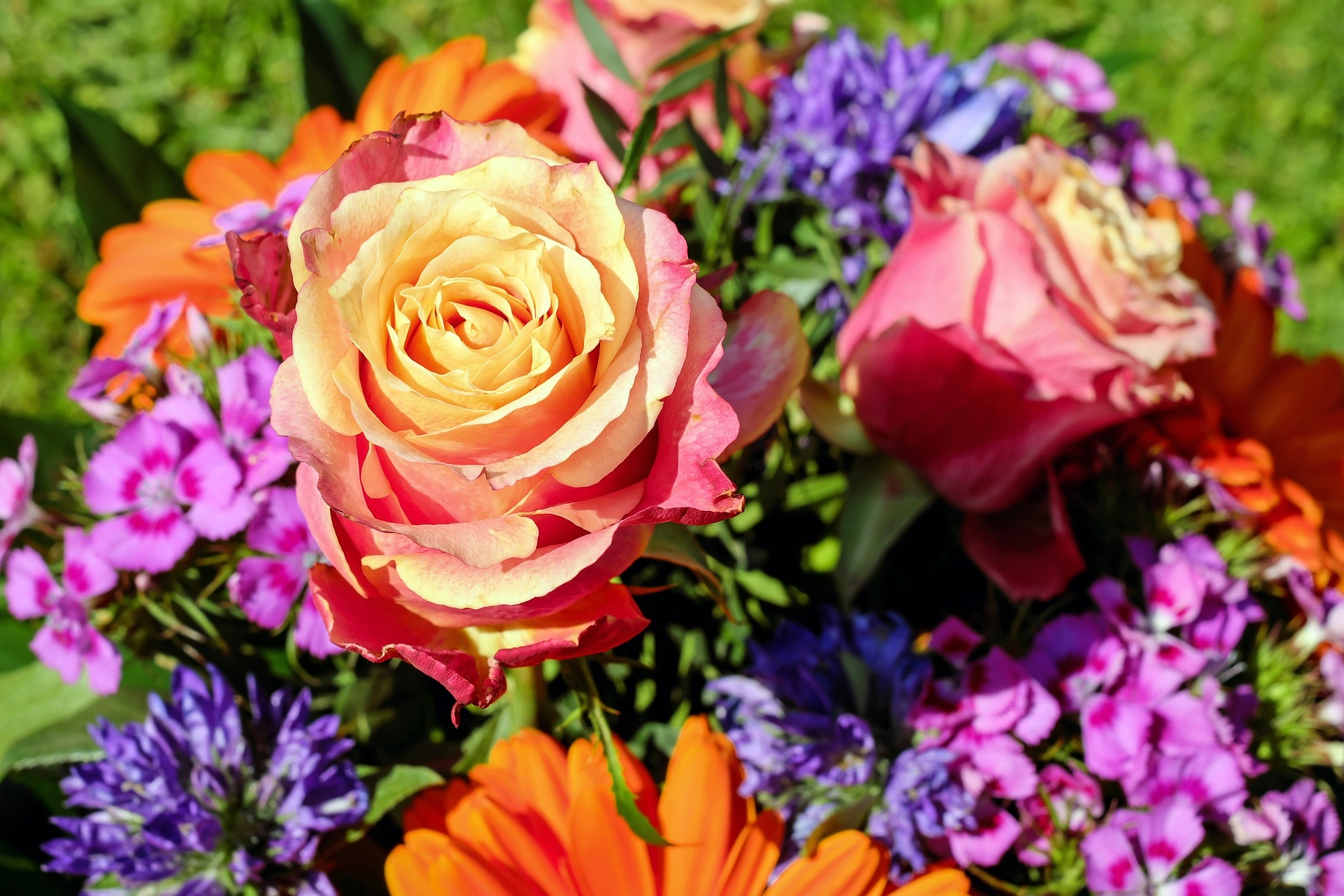 What S Your Birth Flower Birth Month Flowers Meanings The
