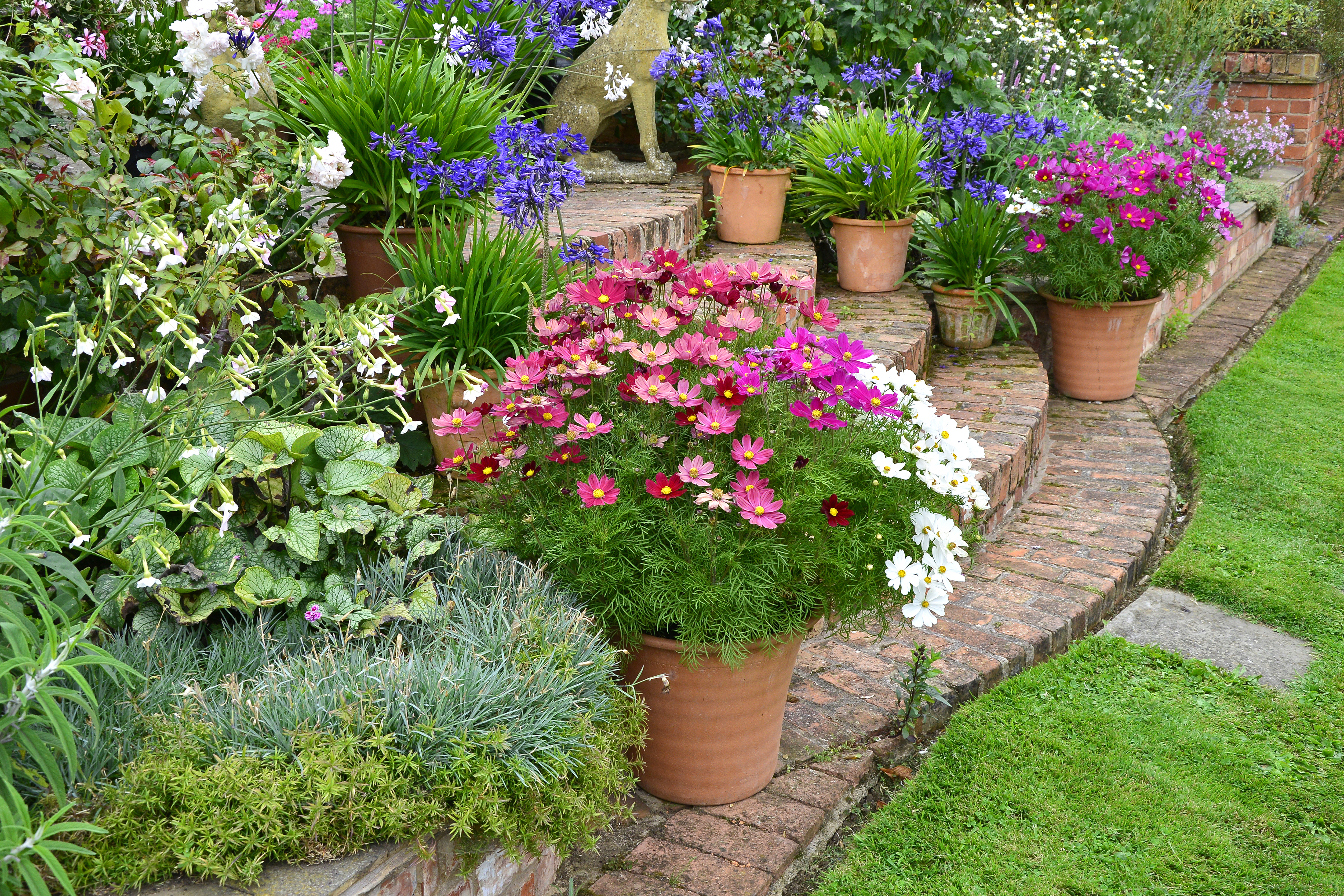 How To Plant Pots Planters Containers The Old Farmer S