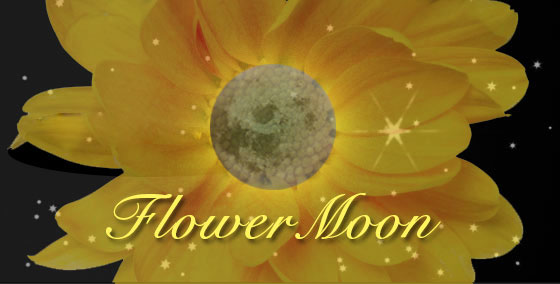 Calendar Weekly Planner : Full moon for may the old farmers almanac