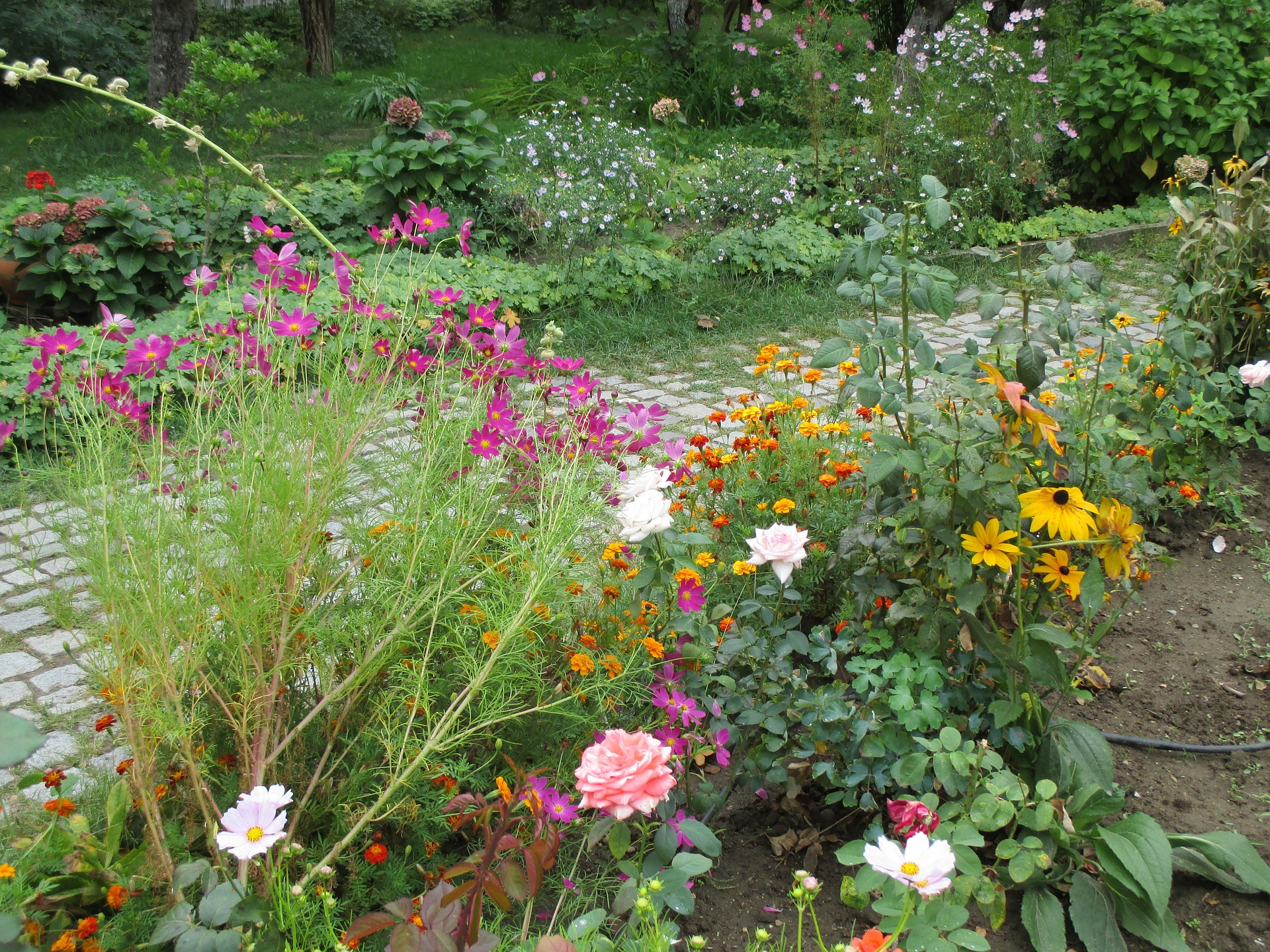 Preparing your garden for winter overwintering plants putting the garden to bed the old - Flowers that bloom from spring to fall ...