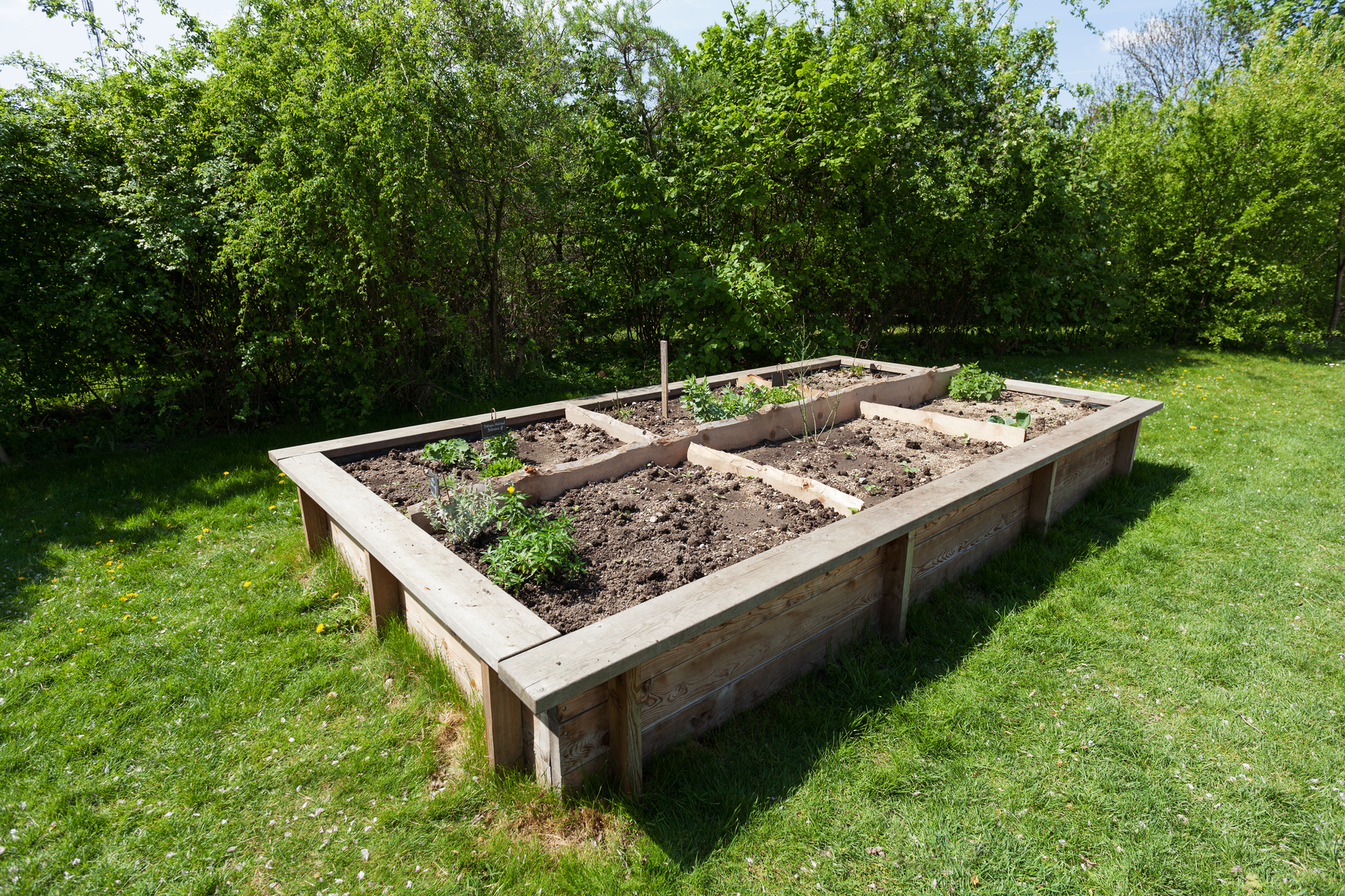 Merveilleux How To Build A Raised Garden Bed: Planning, Building, And Planting | The  Old Farmeru0027s Almanac