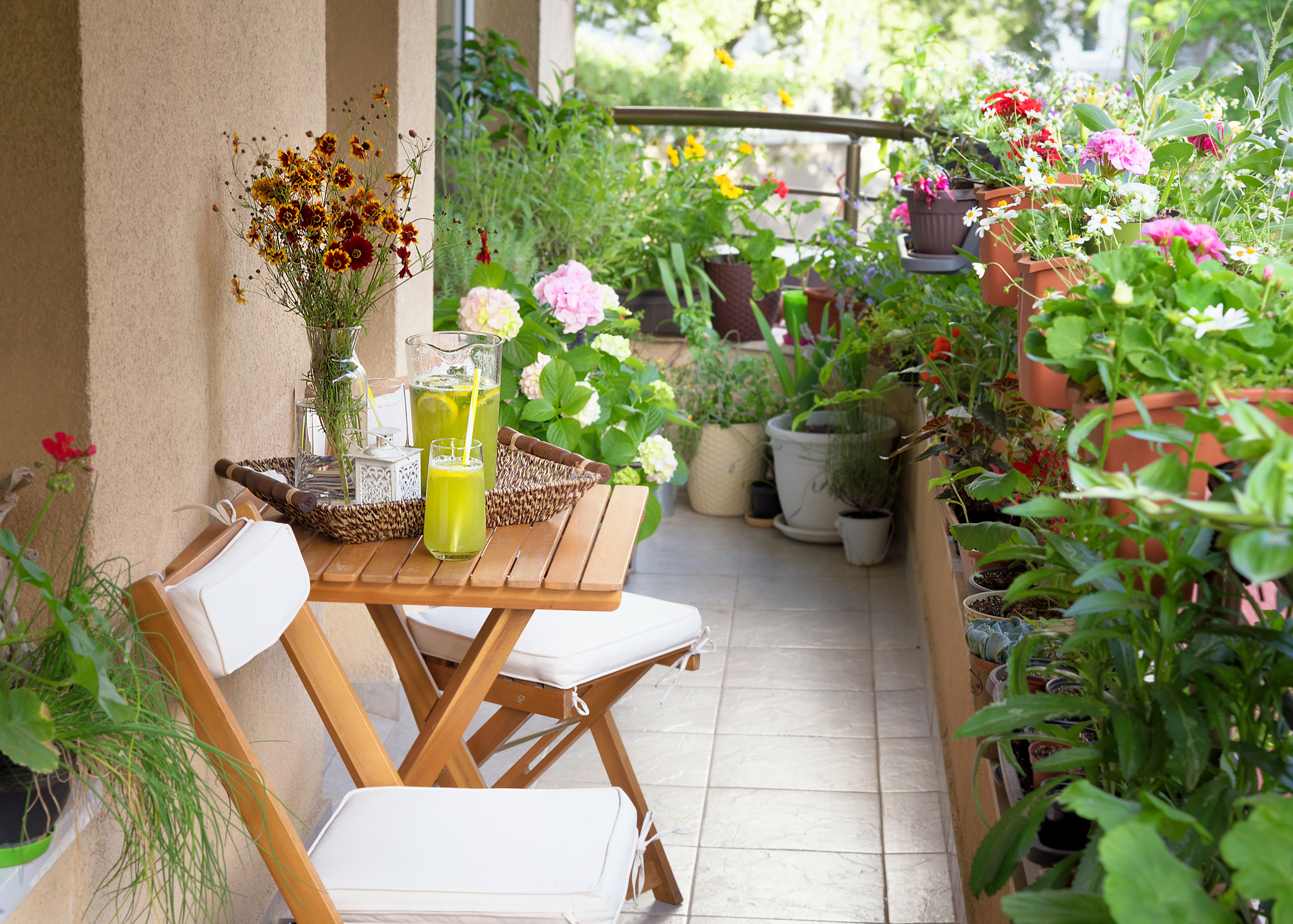 Starting A Terrace Garden Or Balcony Garden] | Old Farmer