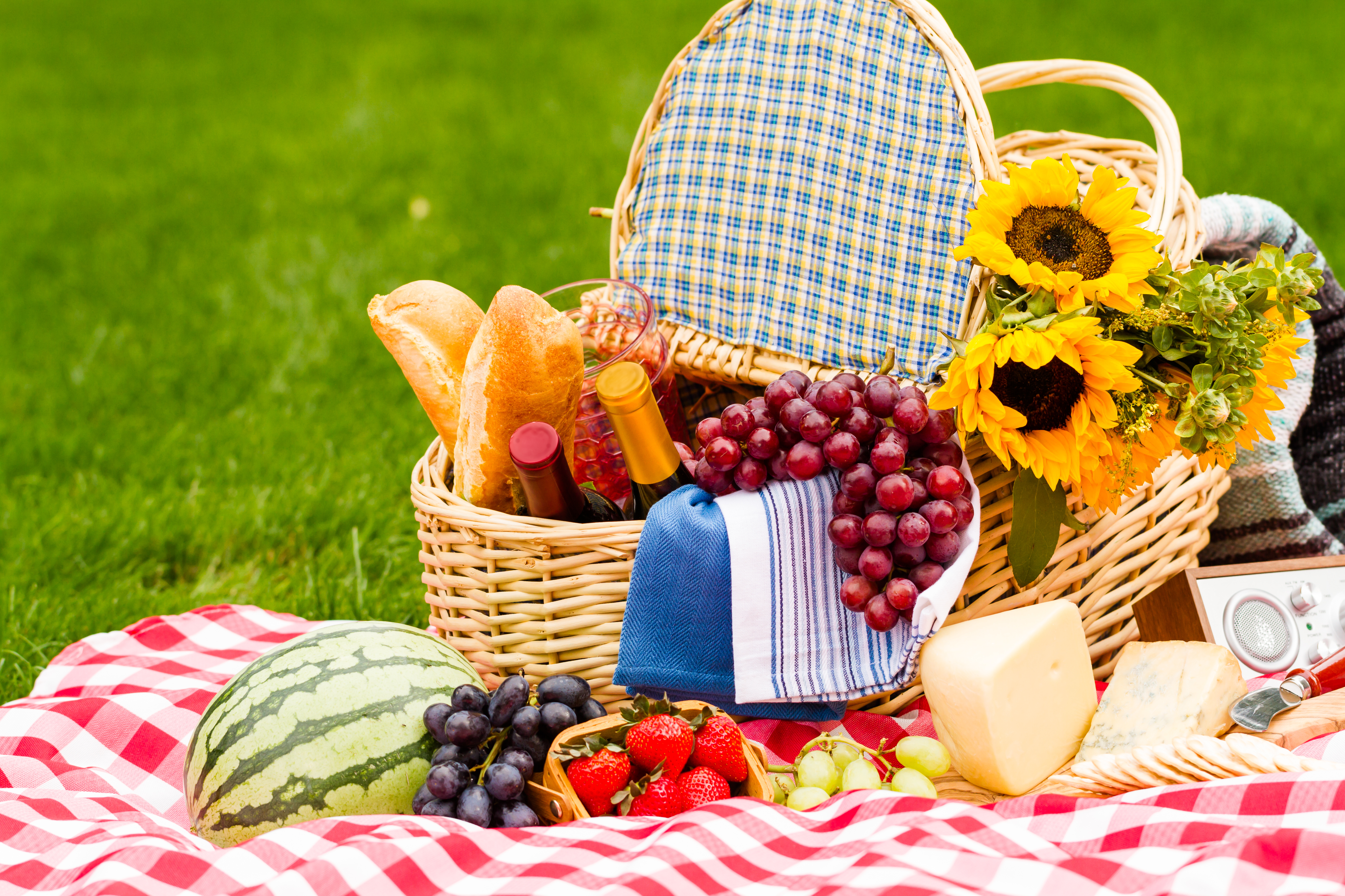Picnic Food Ideas Best Picnic Recipes The Old Farmer S Almanac