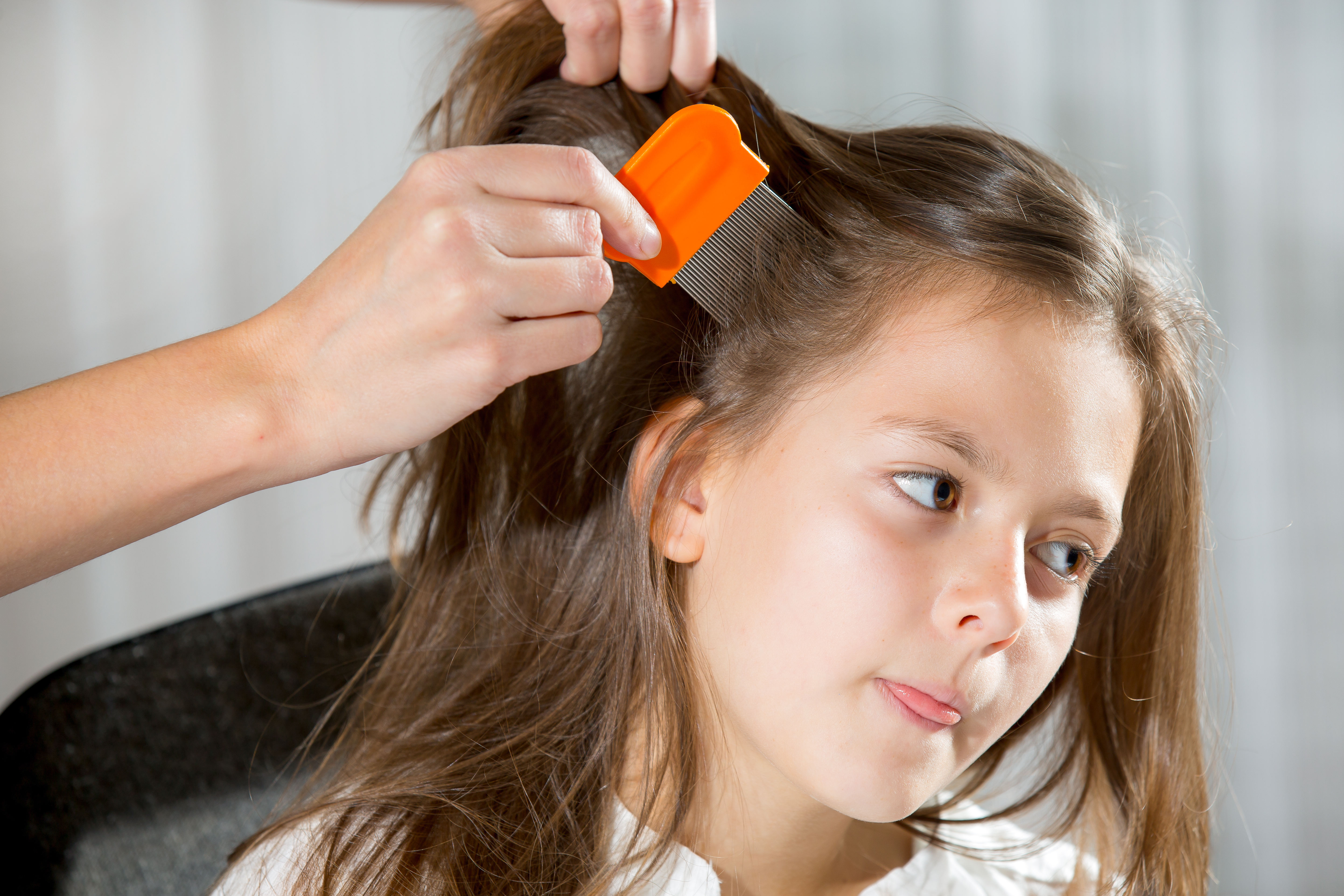 How to Get Rid of Head Lice | Old
