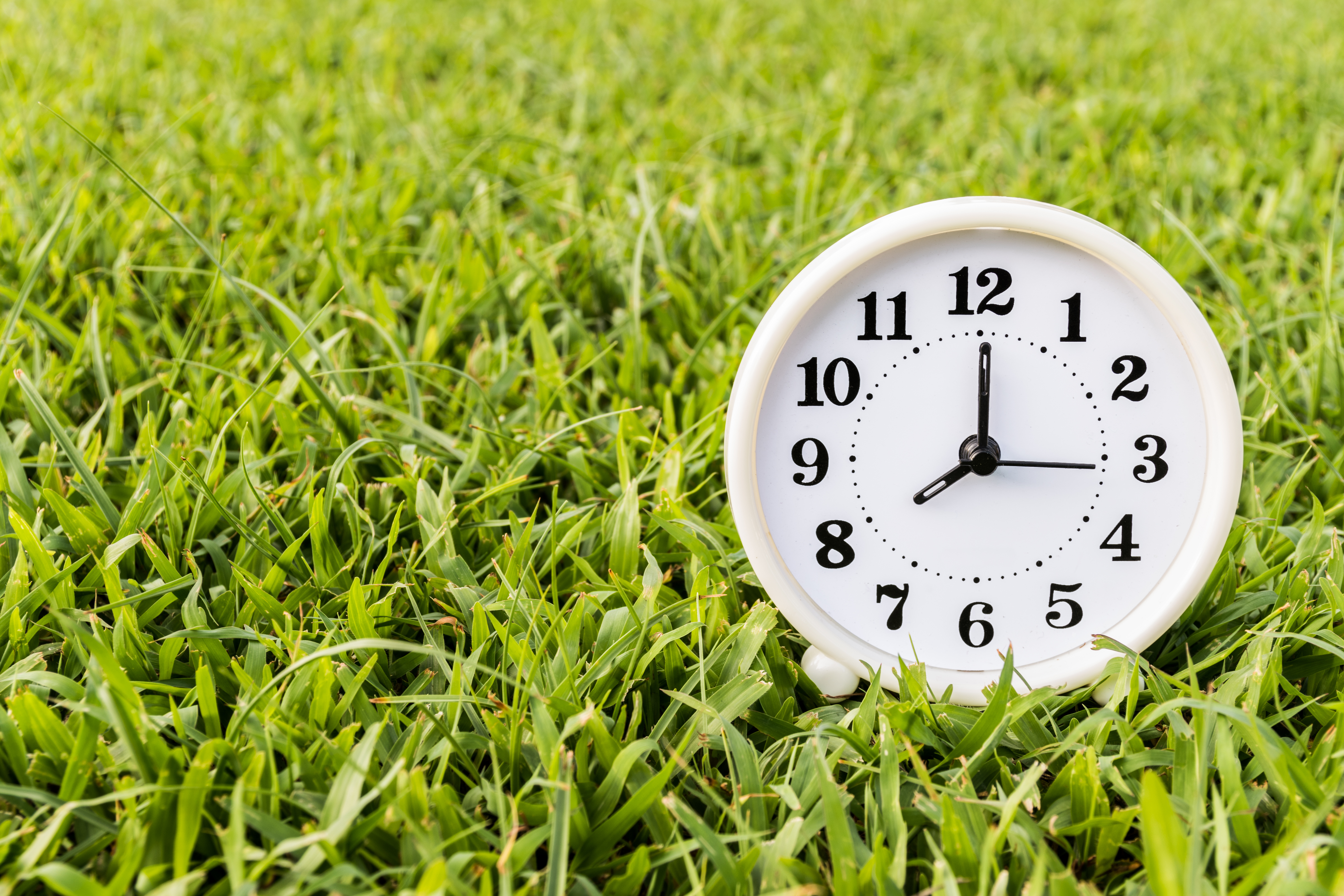 More States Moving to Keep Daylight Saving Time Permanent  Old