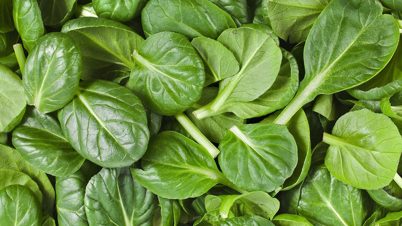 Image result for spinach