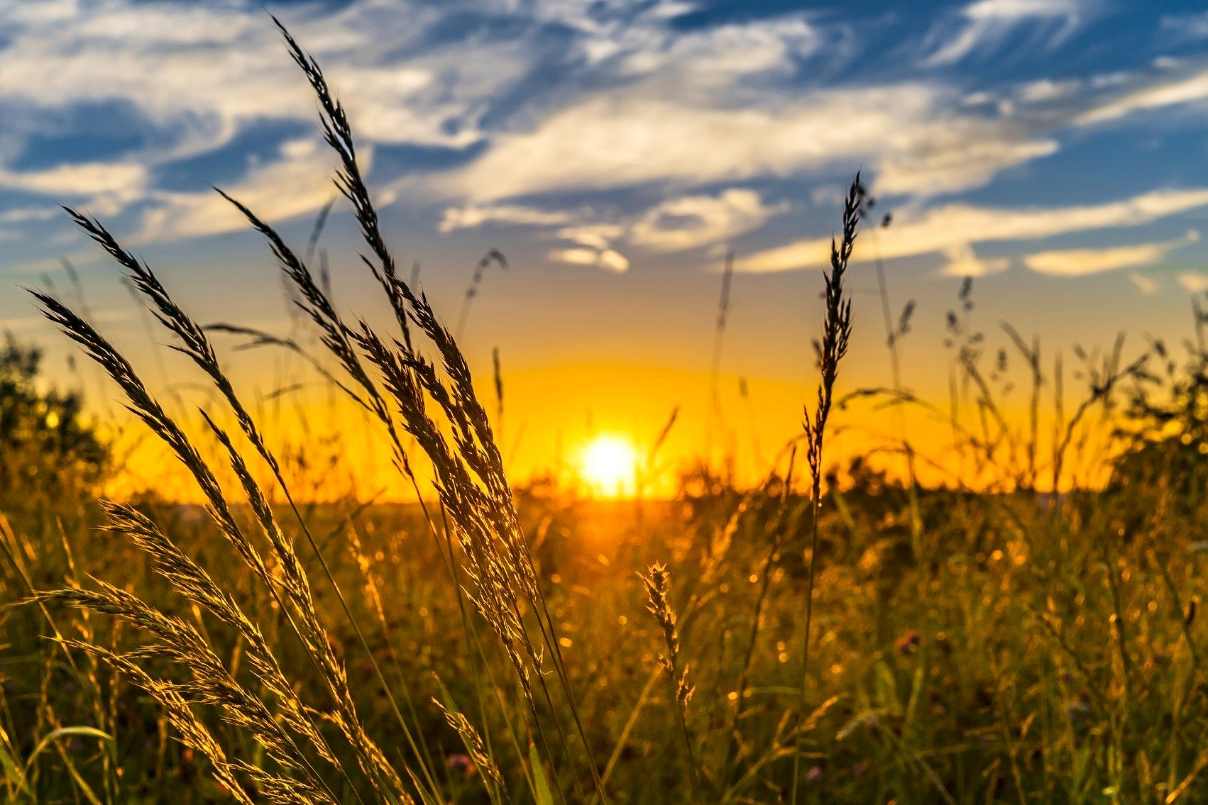 Summer Solstice 2021: Celebrate the First Day of Summer | The Old Farmer's  Almanac