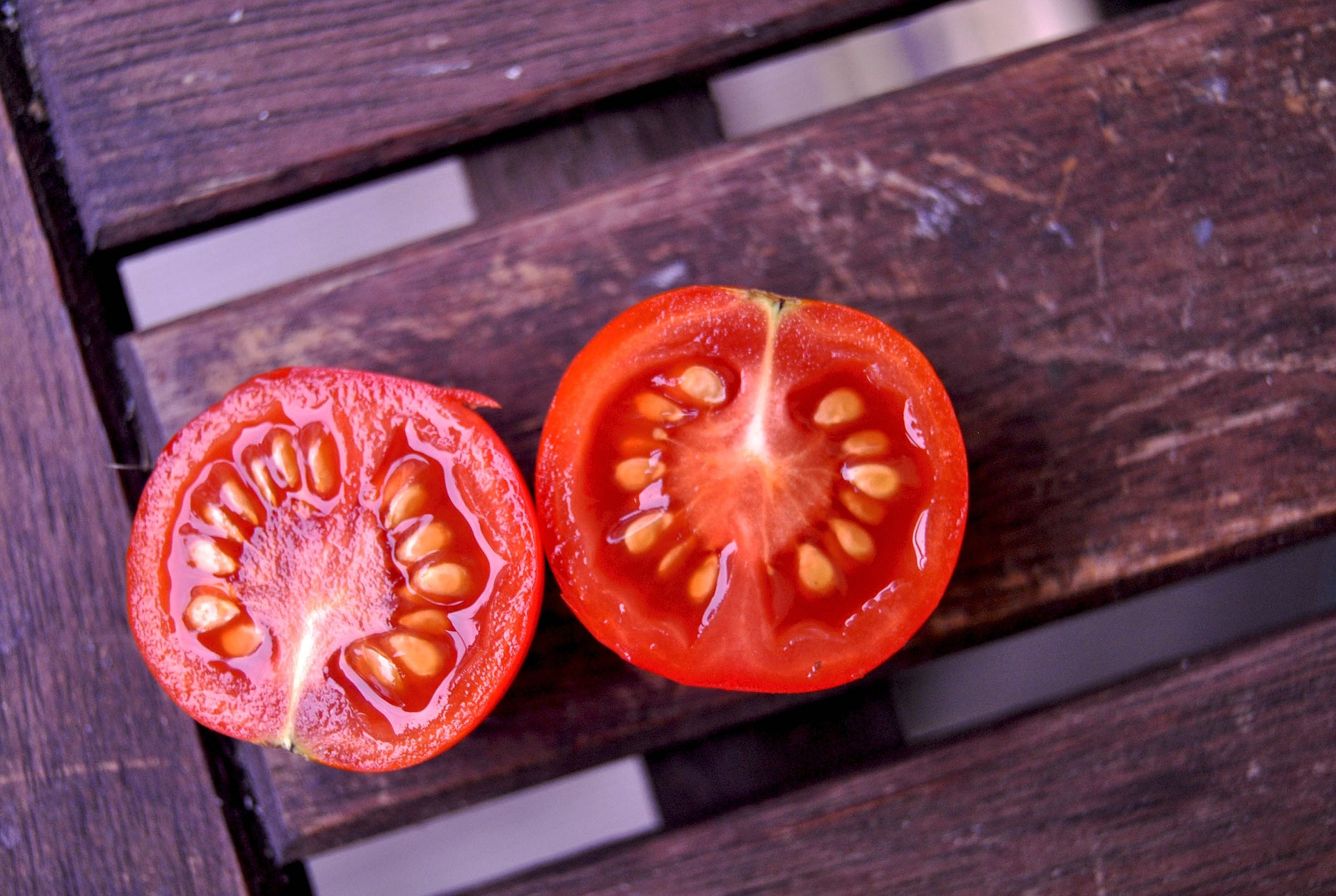 How To Grow Tomatoes From Seed The