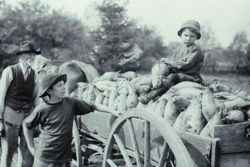 What Every Farmer S Child Should Know The Old Farmer S