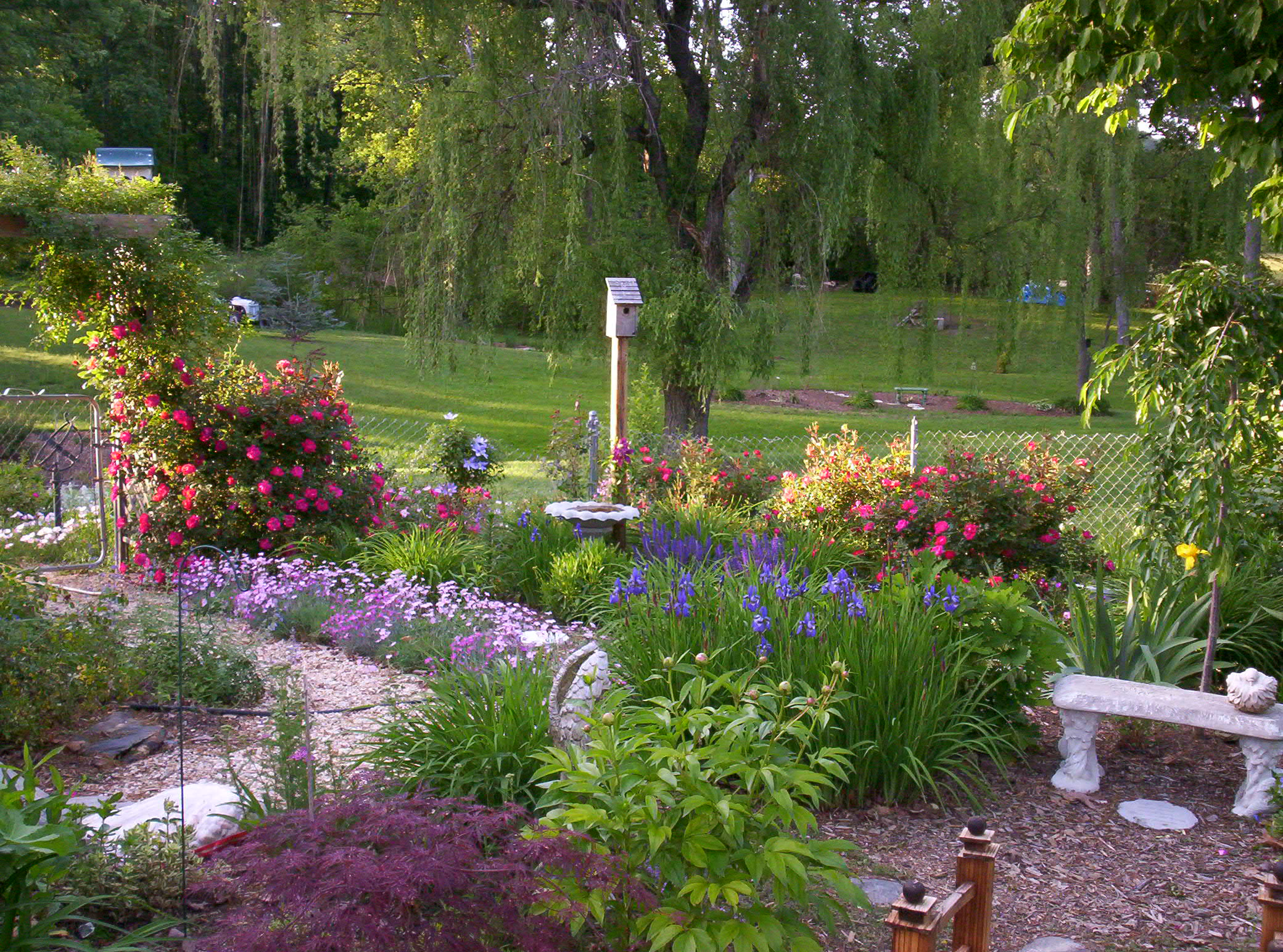 Garden plans perennials flowers list free plot plan the for Perennial garden design