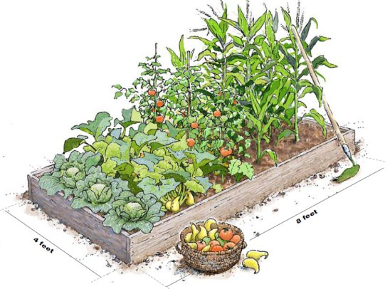 ... Garden Design With How To Build Raised Garden Beds Construction Tips  The Old With How To
