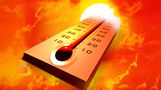 Tips For Gardening In Extreme Heat The Old Farmer S Almanac