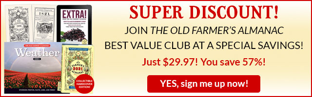 Almanac Best Value Club