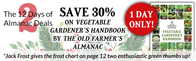 The Vegetable Gardener's Handbook