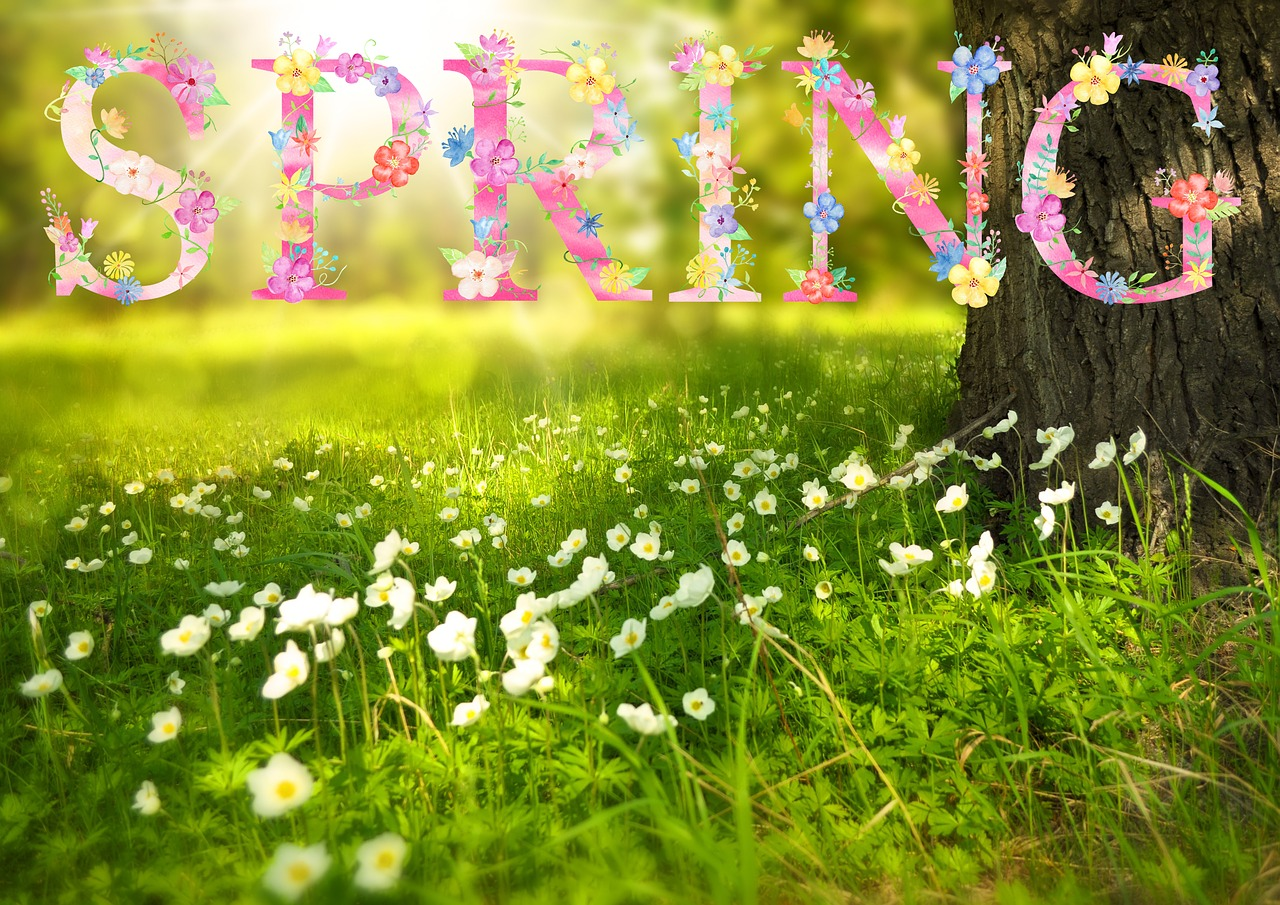 Spring Equinox 2018 The First Day Of Spring Old Farmers Almanac