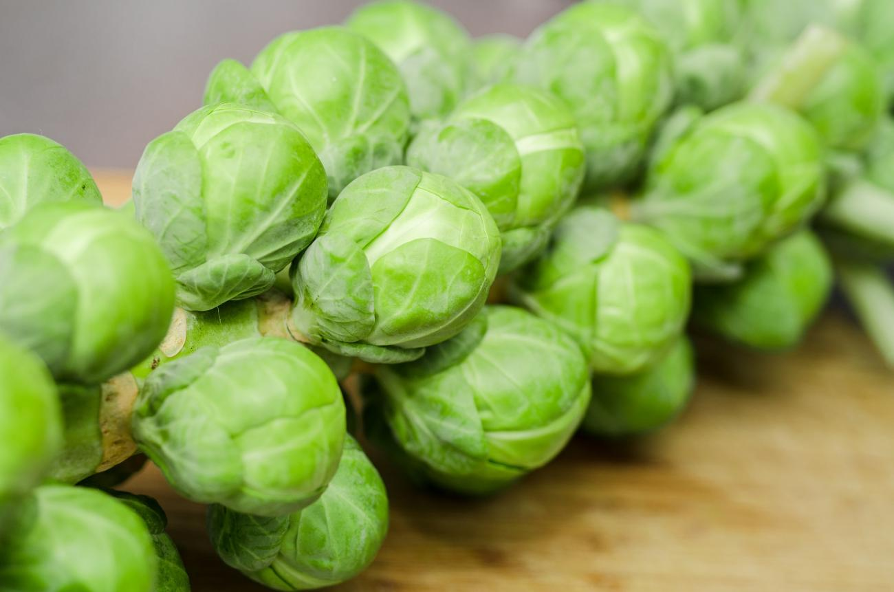 Brussels Sprouts (Unharvested)