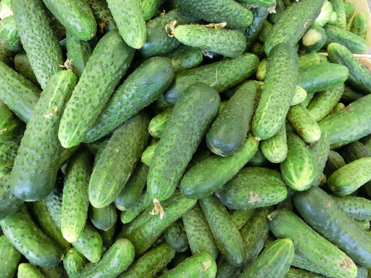 cucumbers-nutrition-natural-remedies