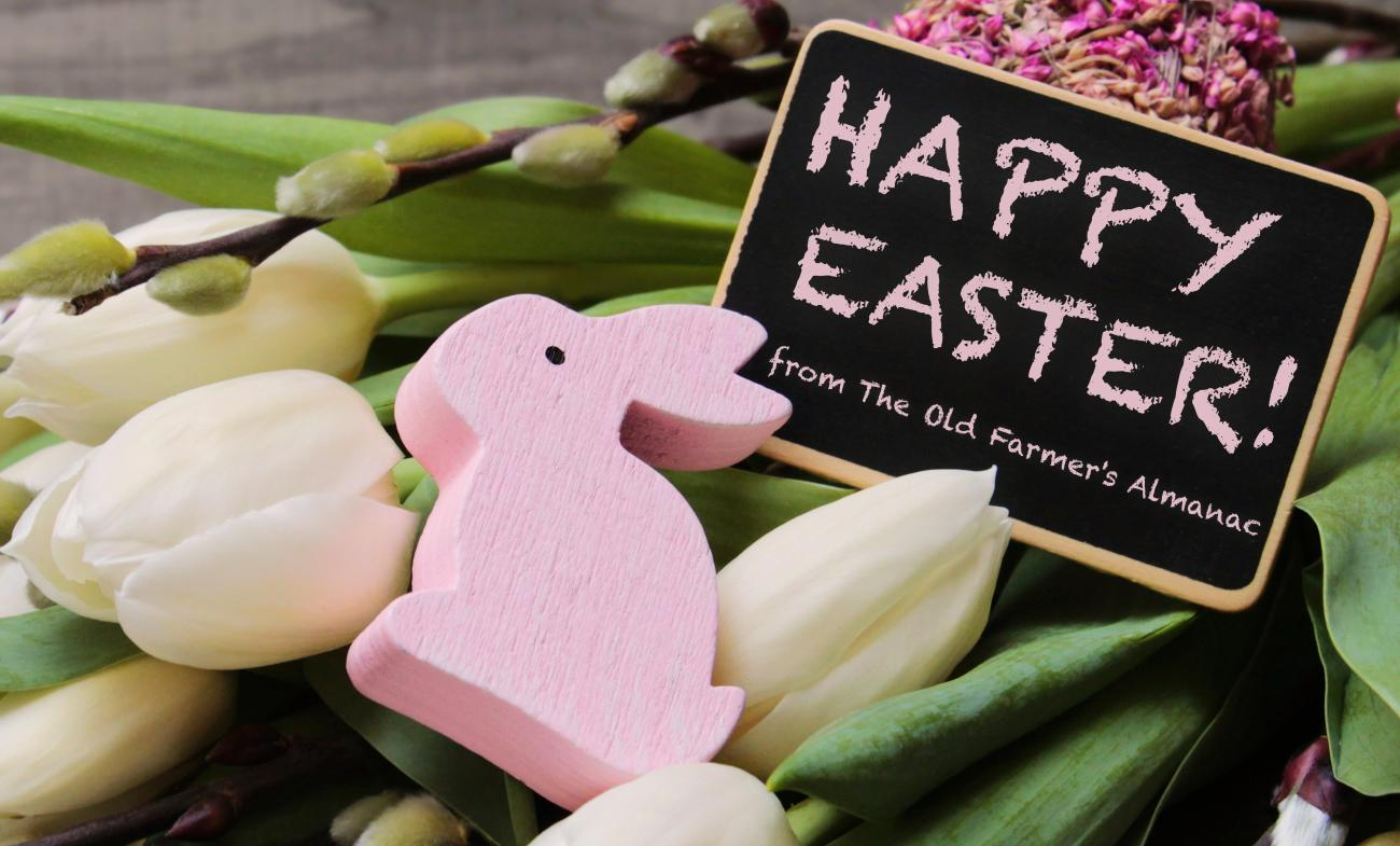 Easter Bunny & Flowers - OFA Message