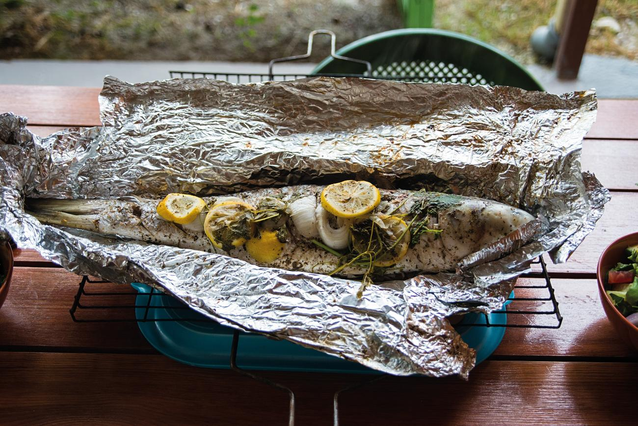 Campfire Fish on Foil
