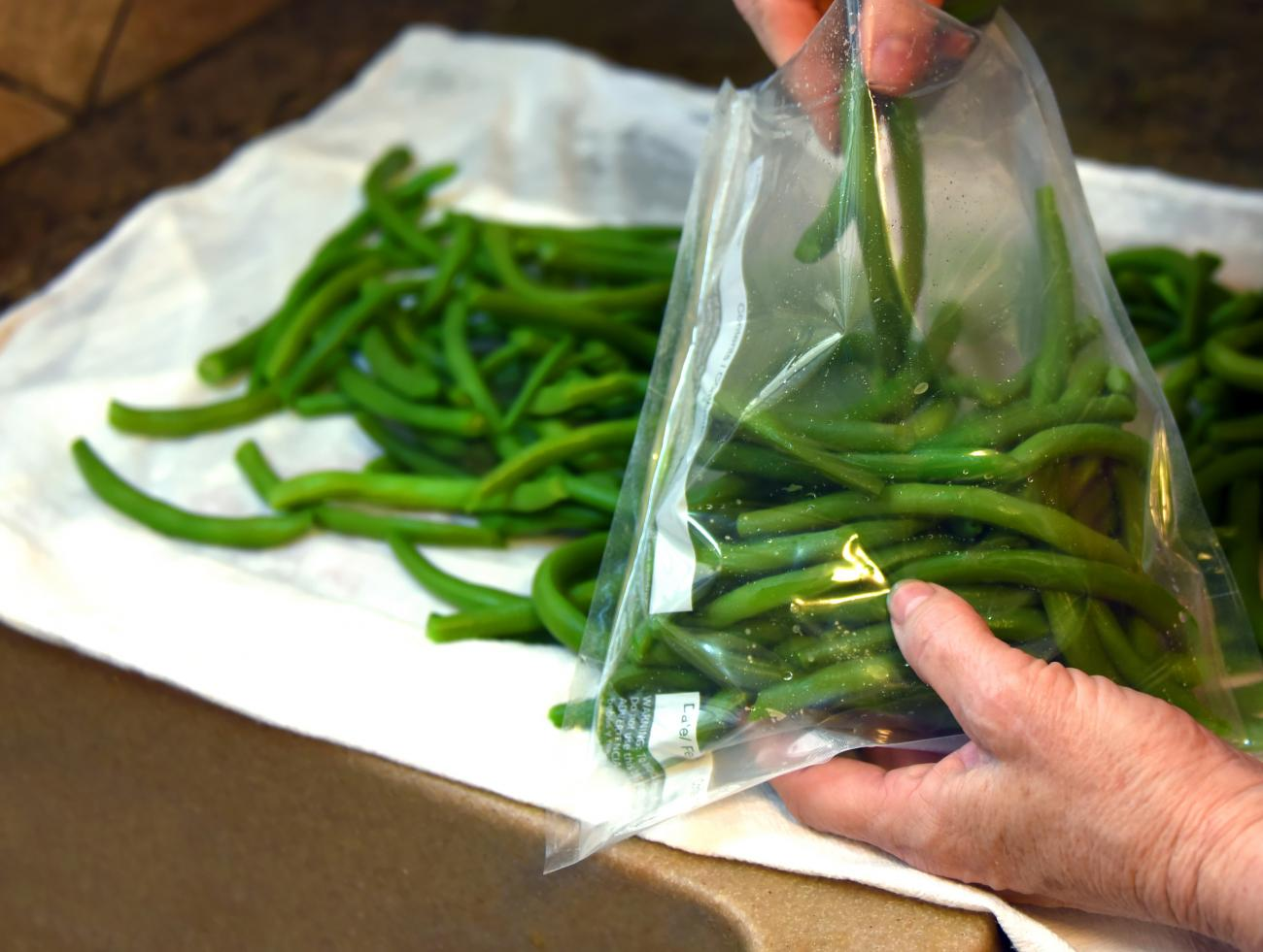 Green Beans Being Packed in Freezer Bags