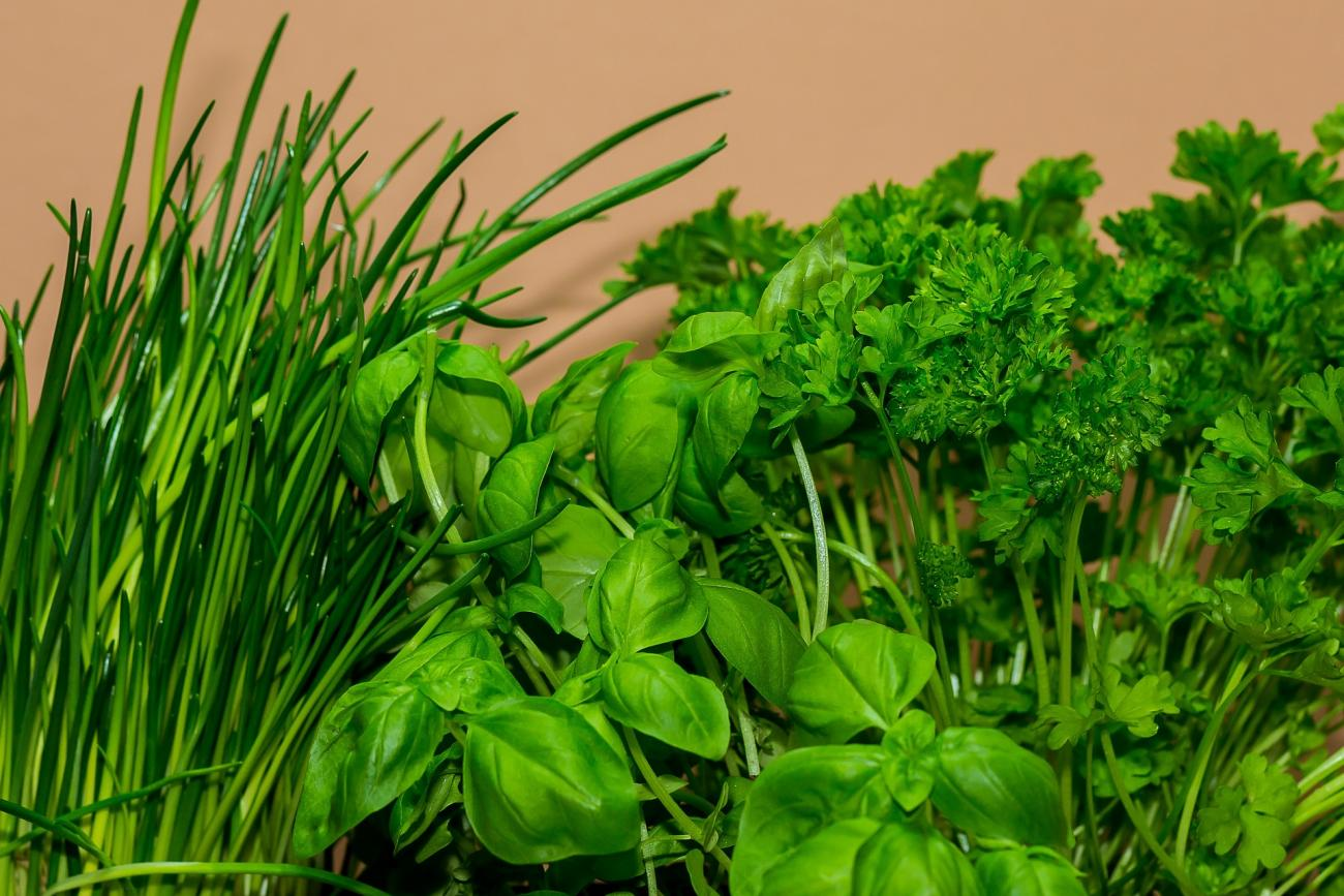 Herbs to Cook