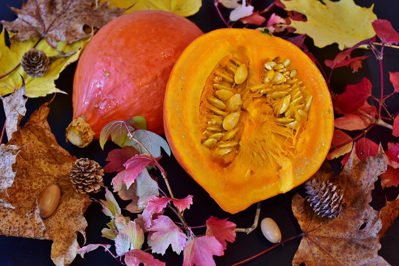 Squash Autumn Foods