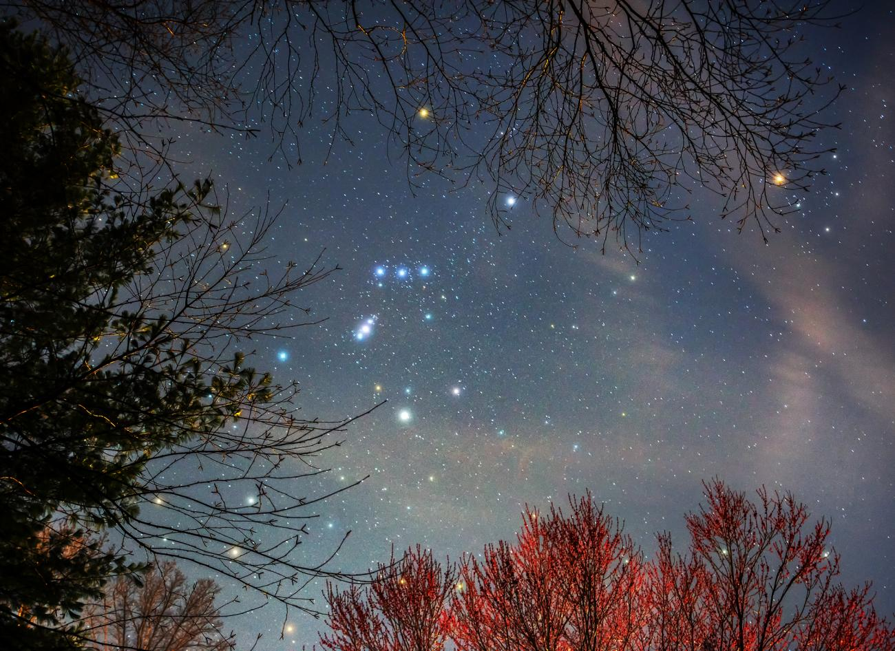 Orion Constellation in March