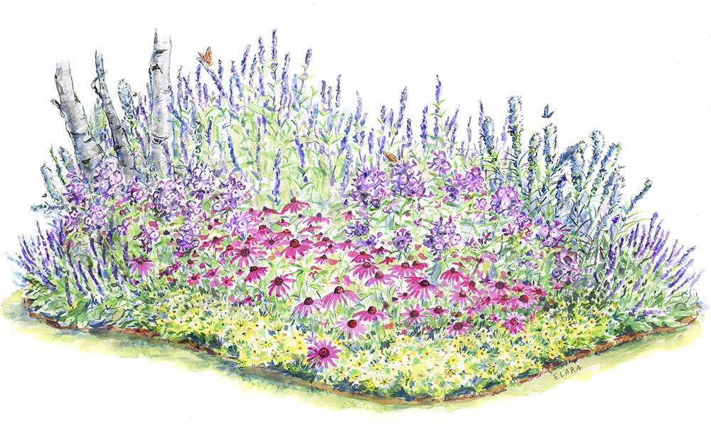 Perennial flowers how to grow and care for perennials the old perennial garden flowers mightylinksfo