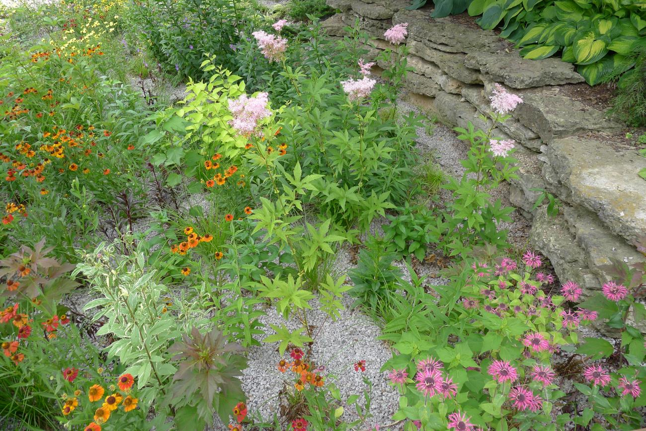 How to Build a Rain Garden Plants and Designs The Old Farmers