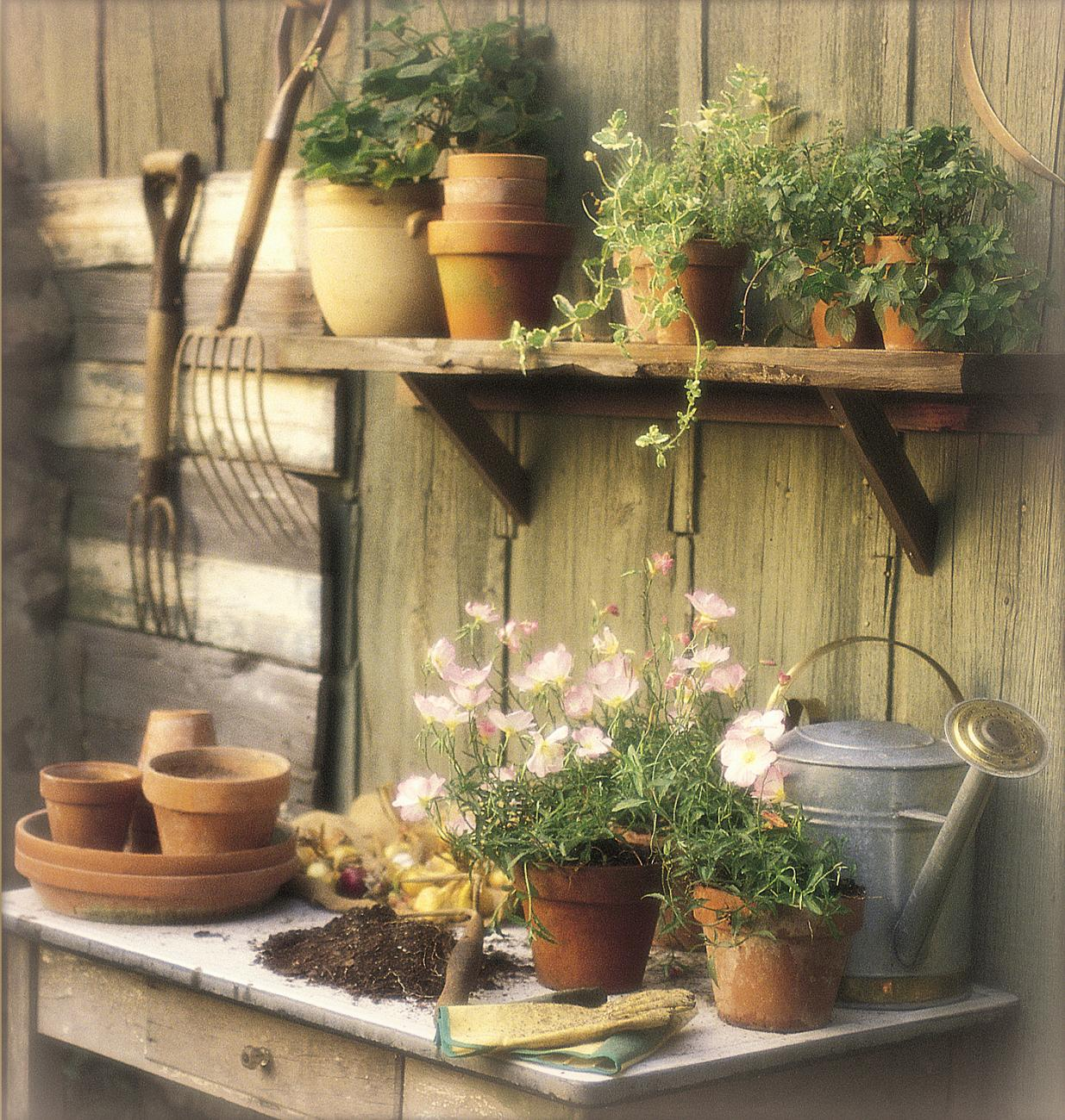 Raised Bed Garden Planting-Thinkstock