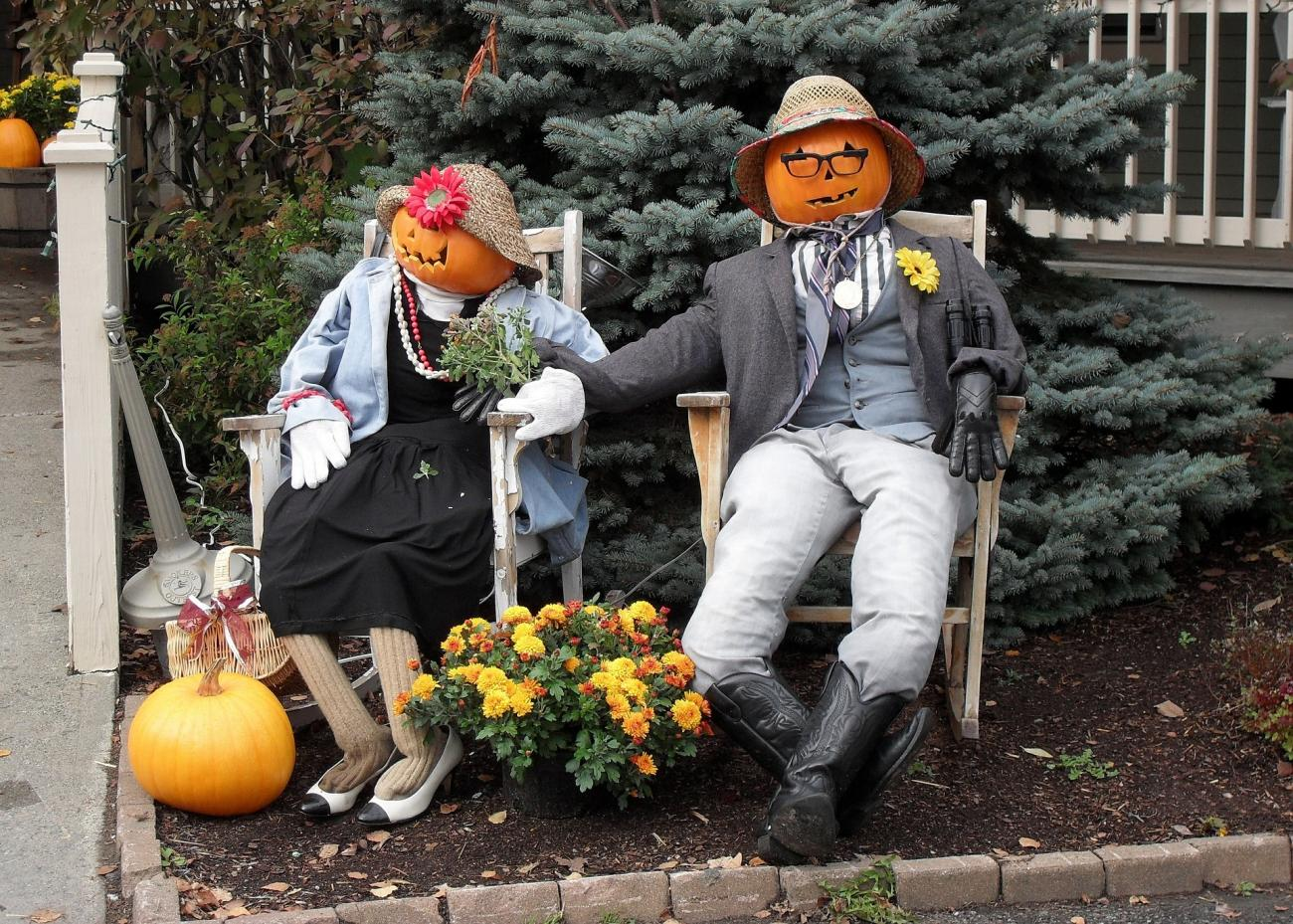 4 Last Minute Halloween Decorations For Gardeners The Old