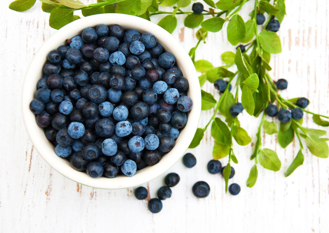 simple-blueberry-recipes