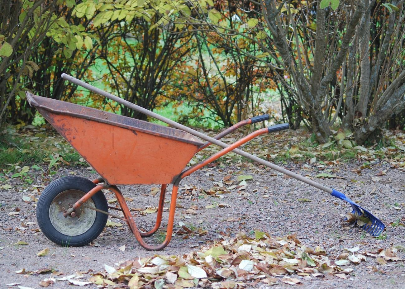 Image result for preparing garden for winter