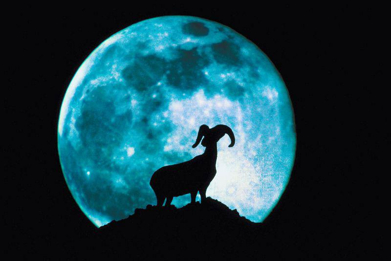Full Moon with Ram