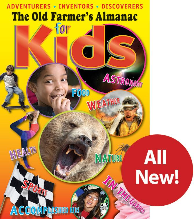 Almanac for Kids Vol 6 Cover