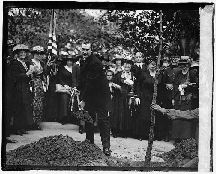 Sec. of Agriculture Edwin T. Meredith and the District Federation of Women's Clubs plant a tree in honor of J. Sterling Morton, founder of Arbor Day. Photo from Library of Congress.